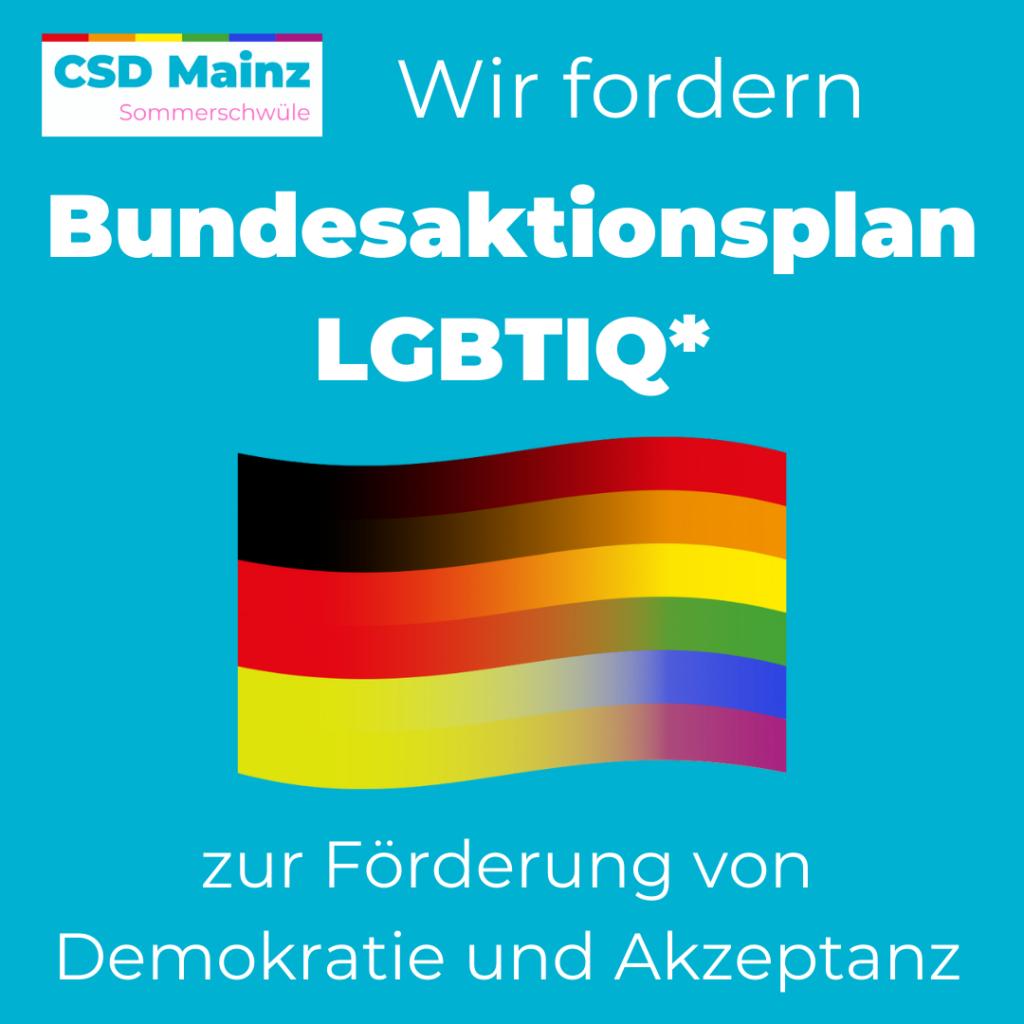 Wir fordern: Bundesaktionsplan LGBTIQ* zur Förderung von Demokratie und Akzeptanz