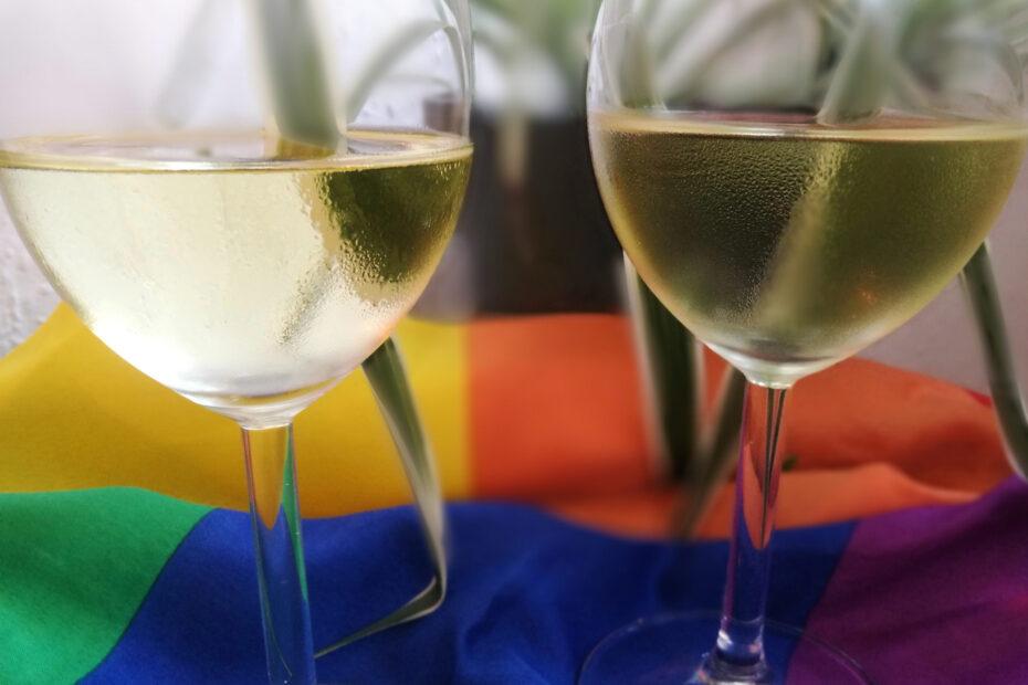 2 Weingläser mit Wein drin stehen auf einer Regenbogenfahne. Im Hintergrund sieht man verschwommen eine Topfpflanze.